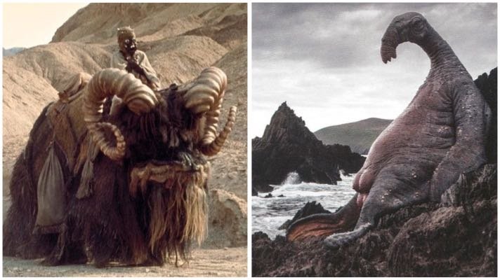 "A bantha and thala-siren from ""Star Wars"""