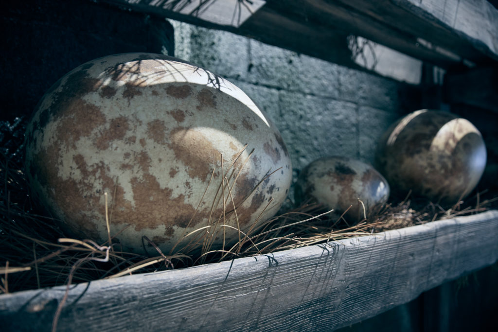 Dragon eggs in Hagrid's Magical Creatures Motorbike Adventure