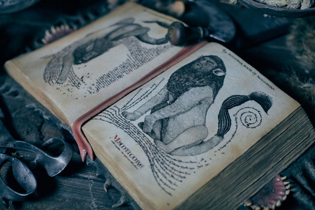 """The Monster Book of Monsters"" in Hagrid's Magical Creatures Motorbike Adventure"