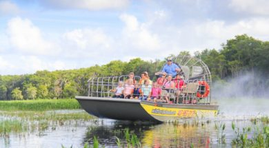 Airboat tours at Wild Florida