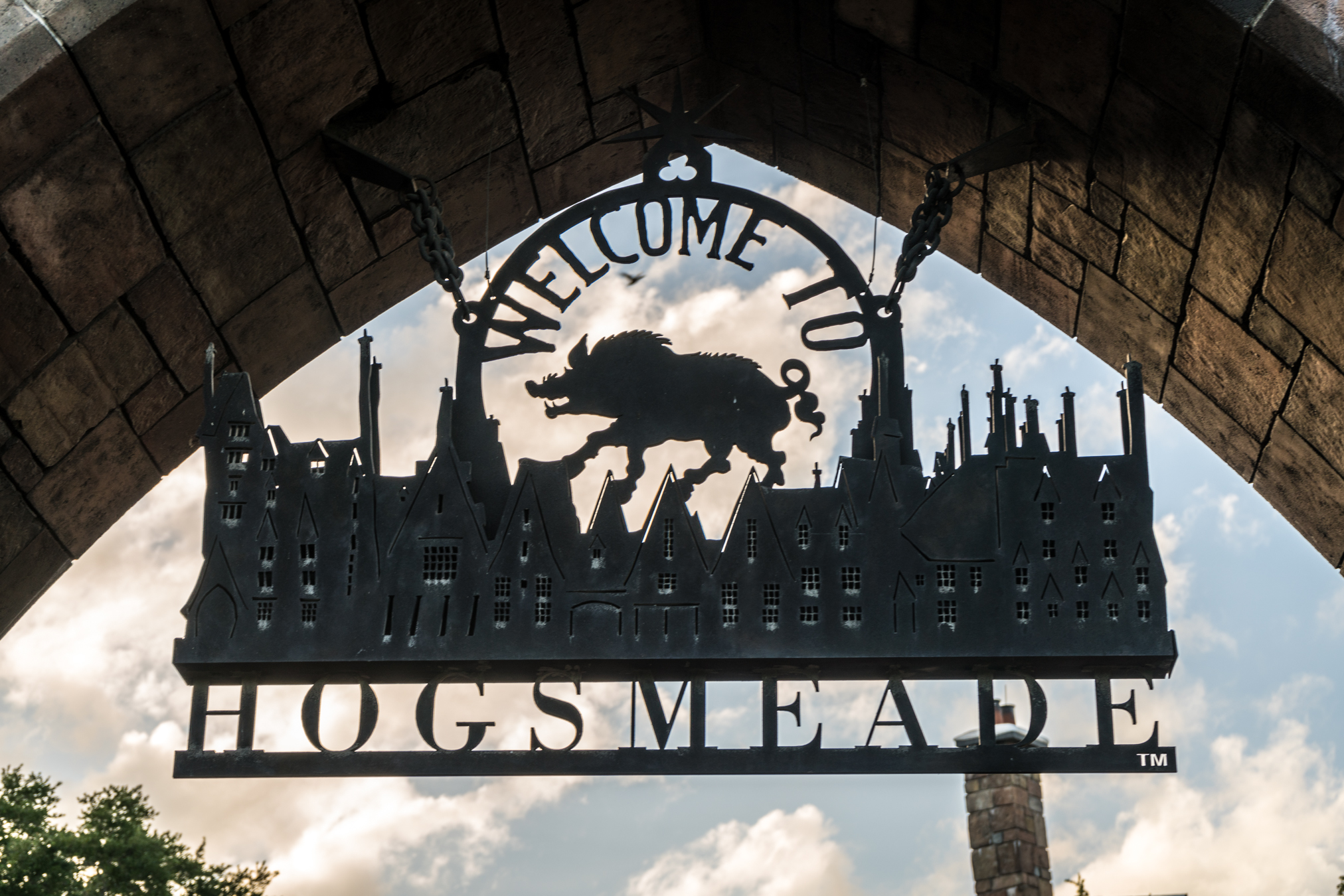 The Wizarding World of Harry Potter celebrates its one-year anniversary