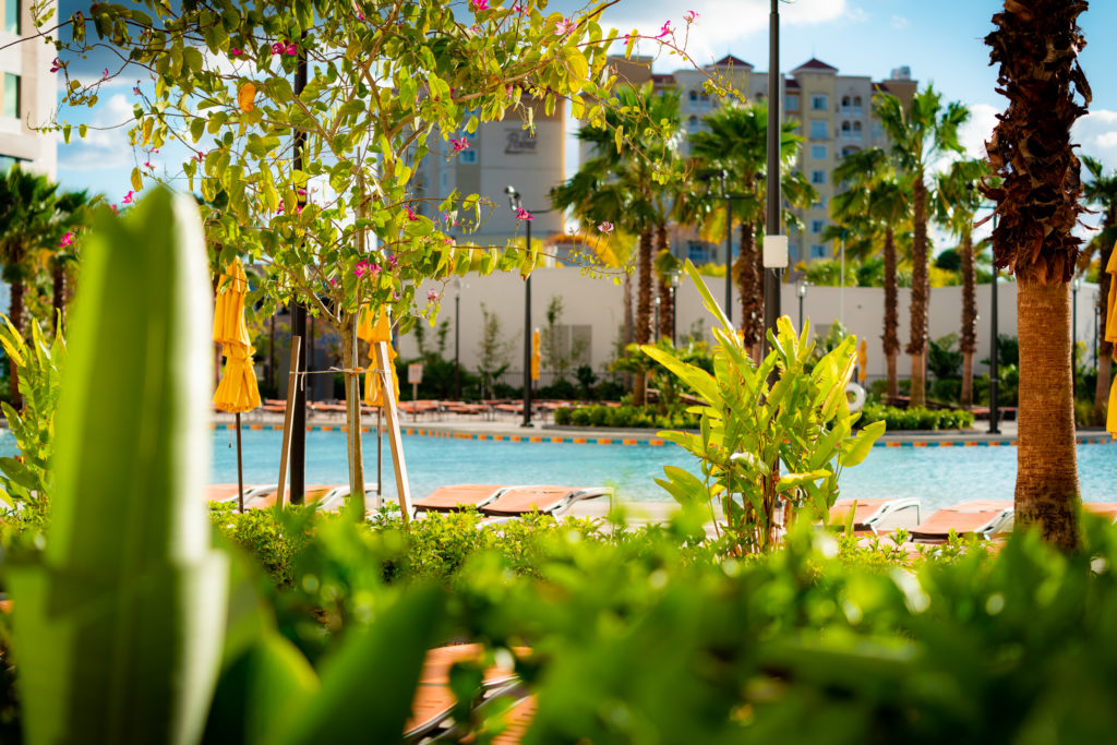 Lush landscaping decorates the pool area at Dockside Inn and Suites