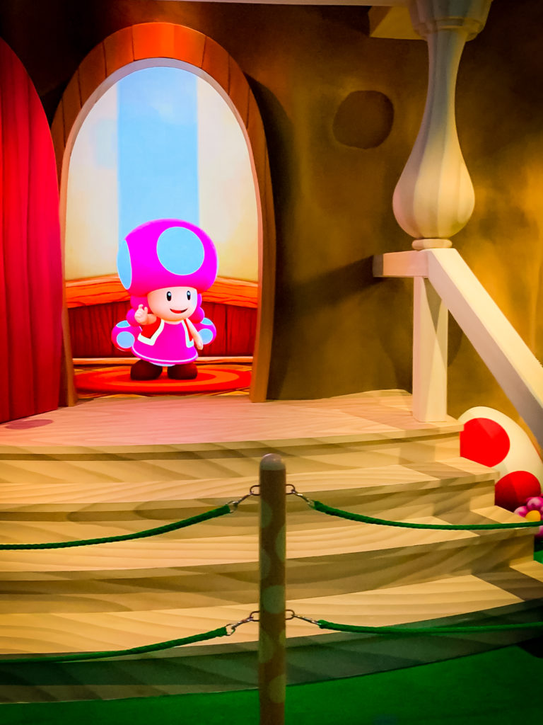 Toadette in the queue of Yoshi's Adventure