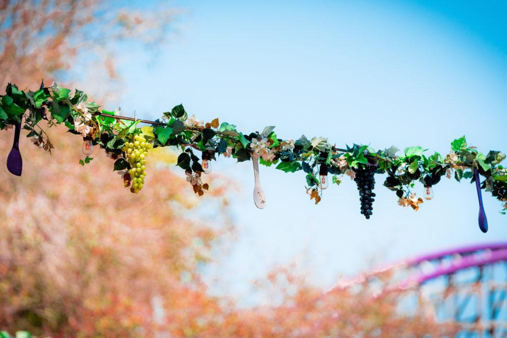 busch-gardens-food-and-wine