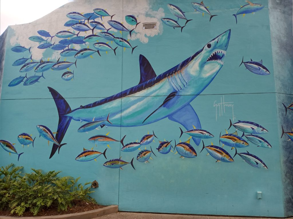 Guy Harvey Mako mural at SeaWorld Orlando