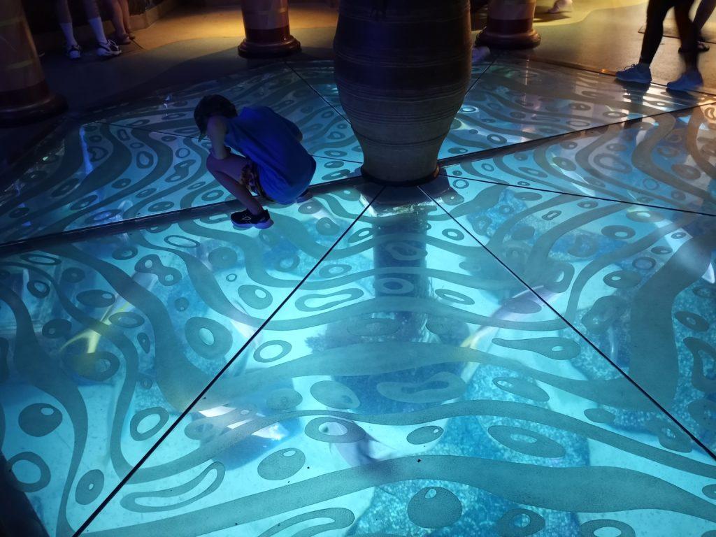 Jewel of the Sea Aquarium at SeaWorld Orlando