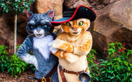 Puss in Boots at Universal Studios Florida's DreamWorks Destination