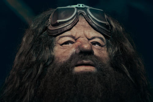 Hagrid animated figure at Hagrid's Magical Creatures Motorbike Adventure 3