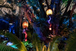 Pandora - The World of Avatar at night at Disney's Animal Kingdom
