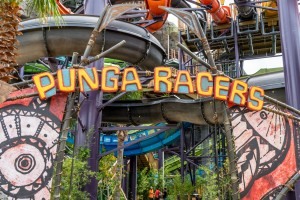 Punga Racers at Universal's Volcano Bay