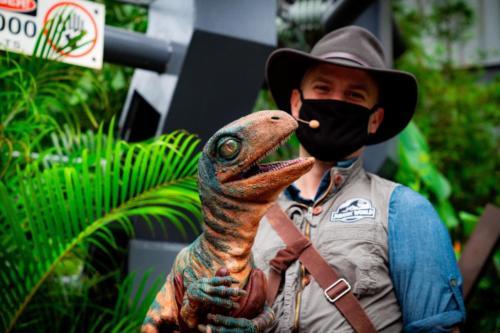 Raptor Encounter
