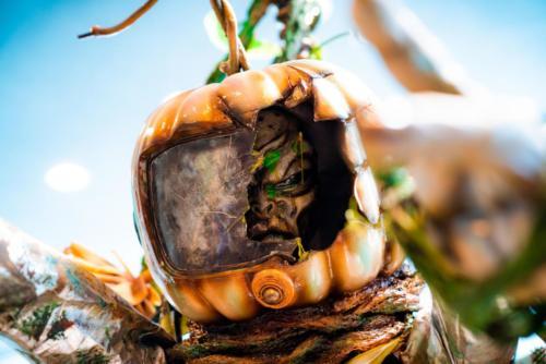 Scarecrow Stalk Halloween 2020