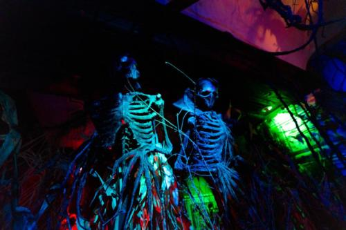 Skeleton Bar Halloween 2020