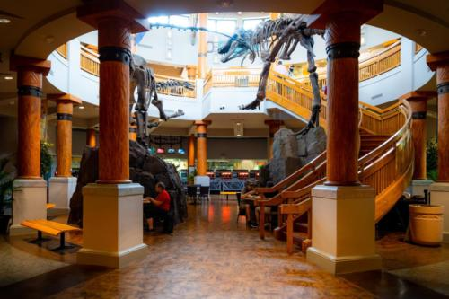 Jurassic Park Annual Passholders' Lounge