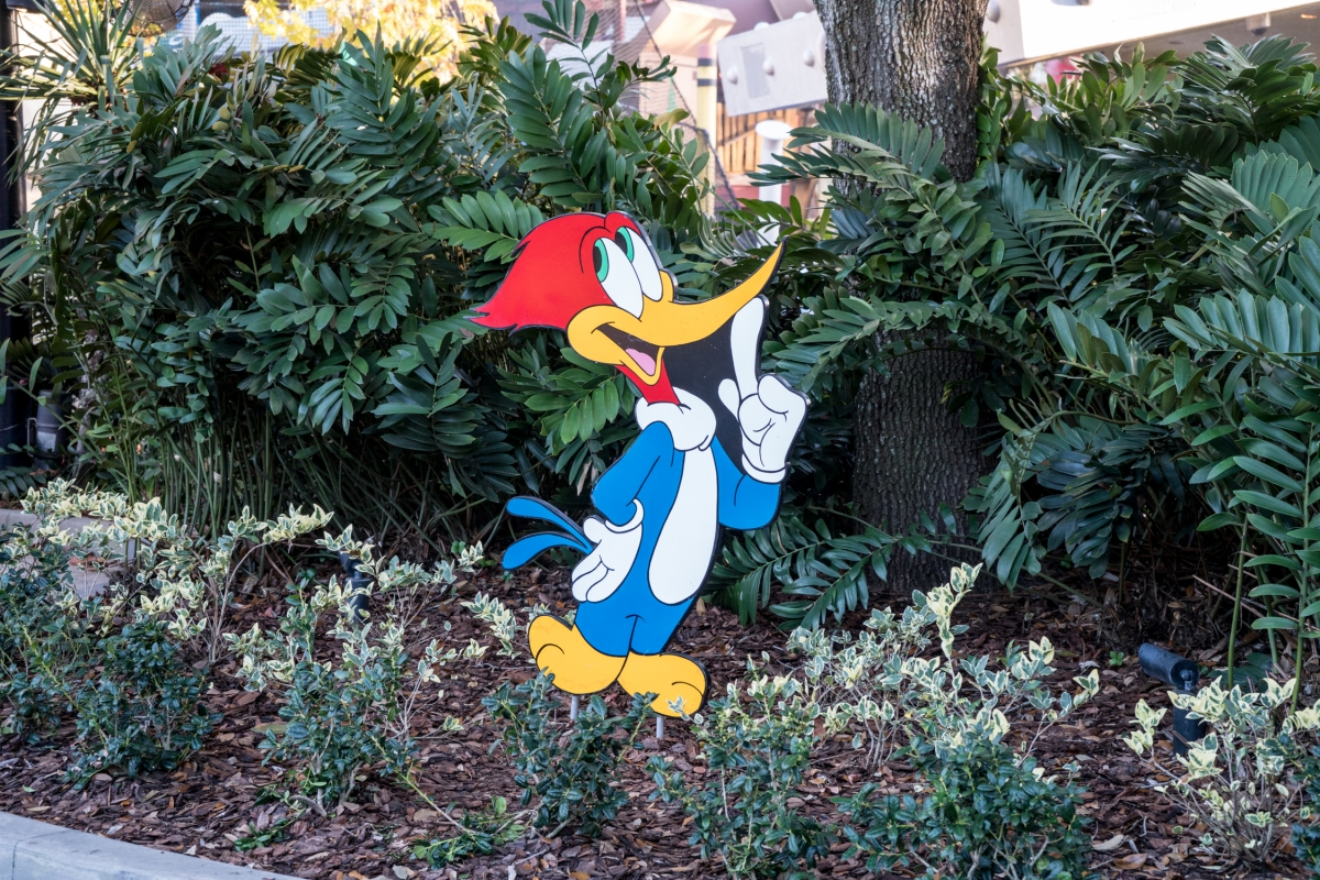 Woody Woodpecker's KidZone at Universal Studios Florida Woody Woodpeckers Nuthouse Coaster