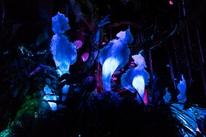Na'vi River Journey in Pandora: The World of Avatar at Disney World's Animal Kingdom
