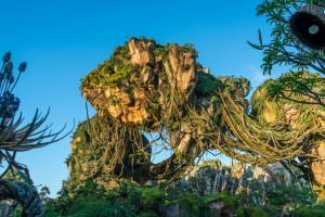 Pandora: World of Avatar at Disney's Animal Kingdom