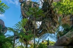 Pandora: World of Avatar at Disney's Animal Kingdom