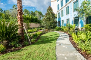 Loews Sapphire Falls Resort pet walk at Universal Orlando